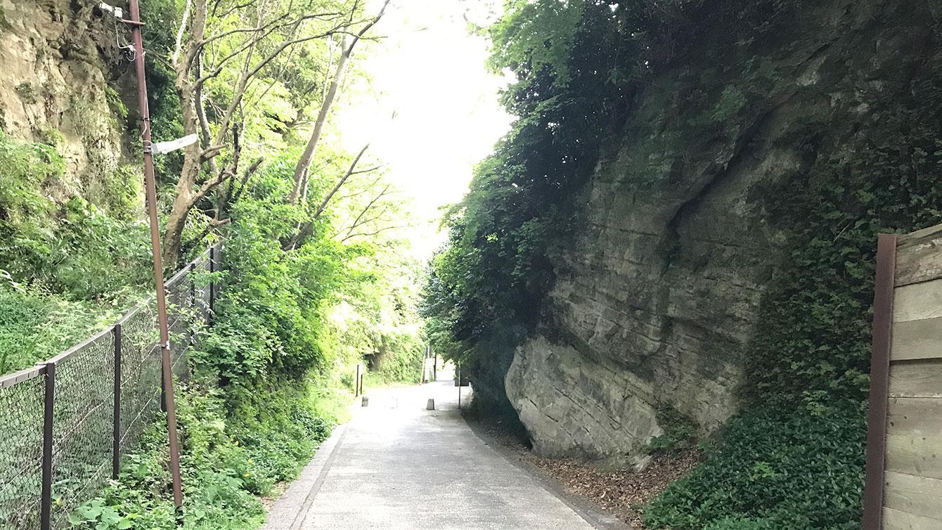 亀ヶ谷坂切通しから鎌倉方面を見たところ