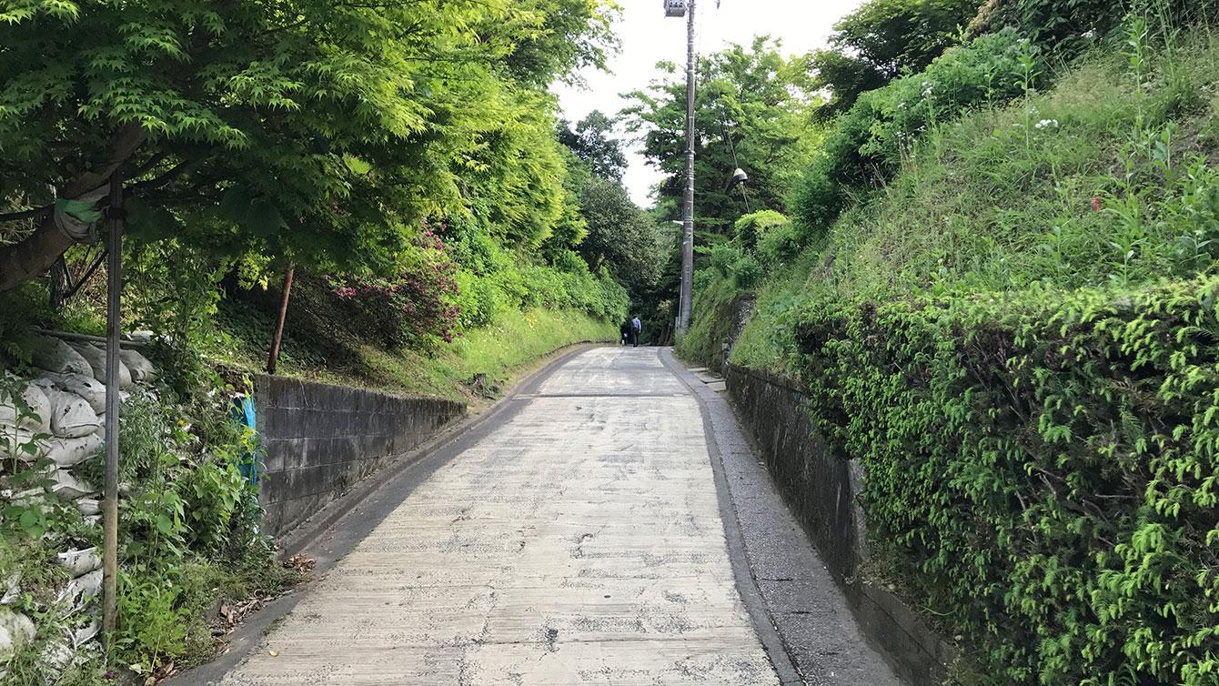 長寿寺側から見た亀ヶ谷坂切通し入り口