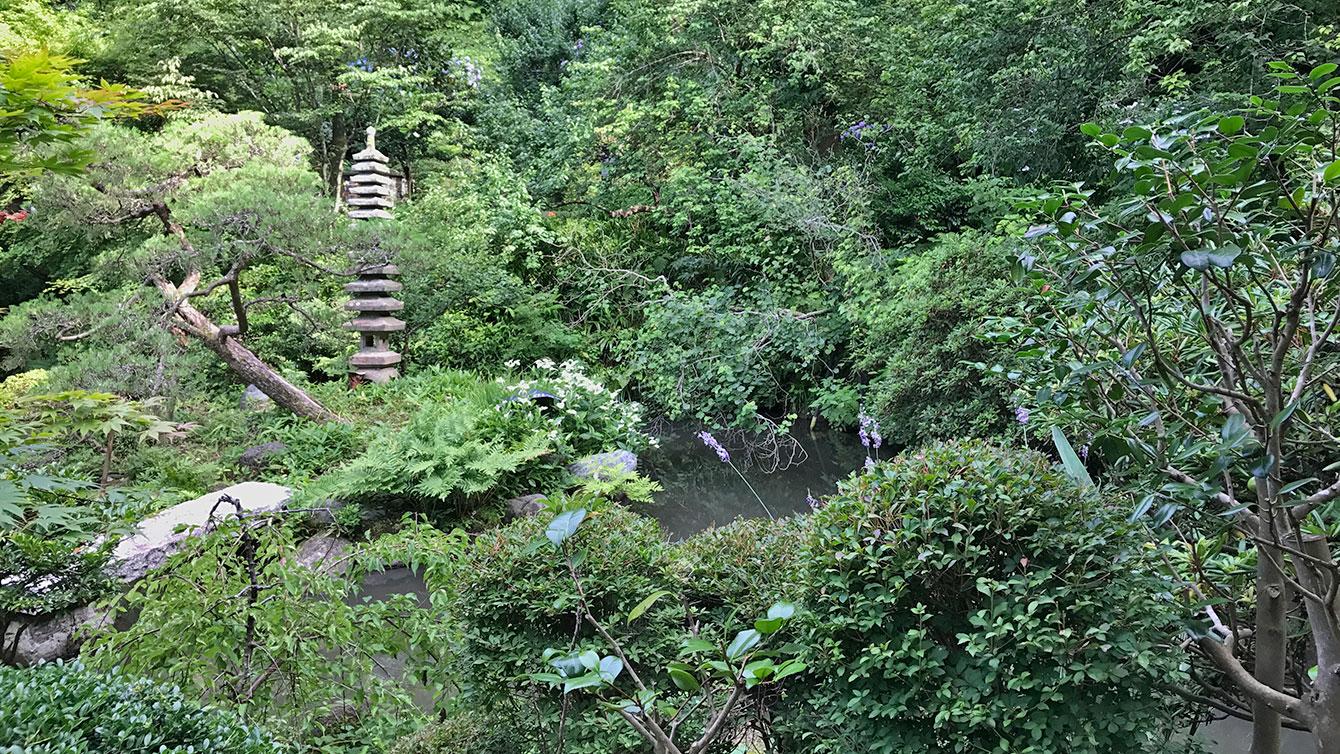 光則寺の池