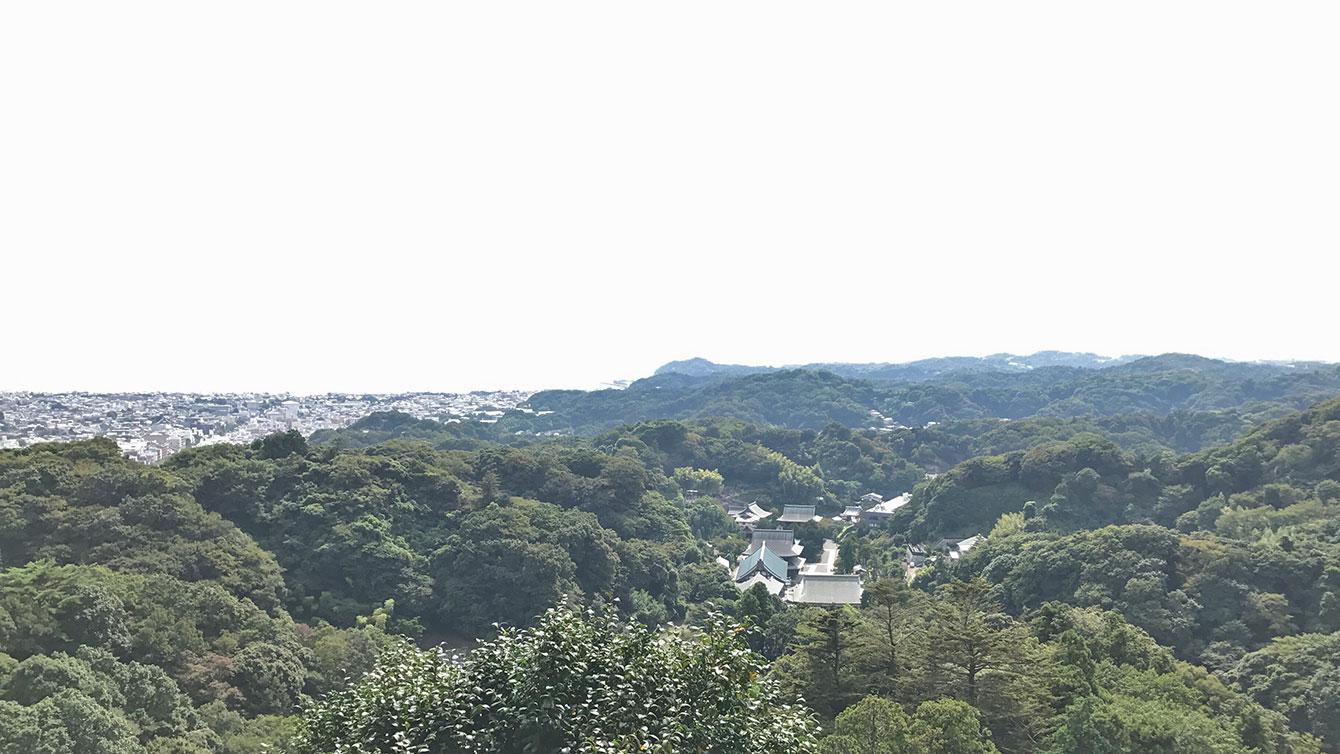 勝上献展望台からの景色