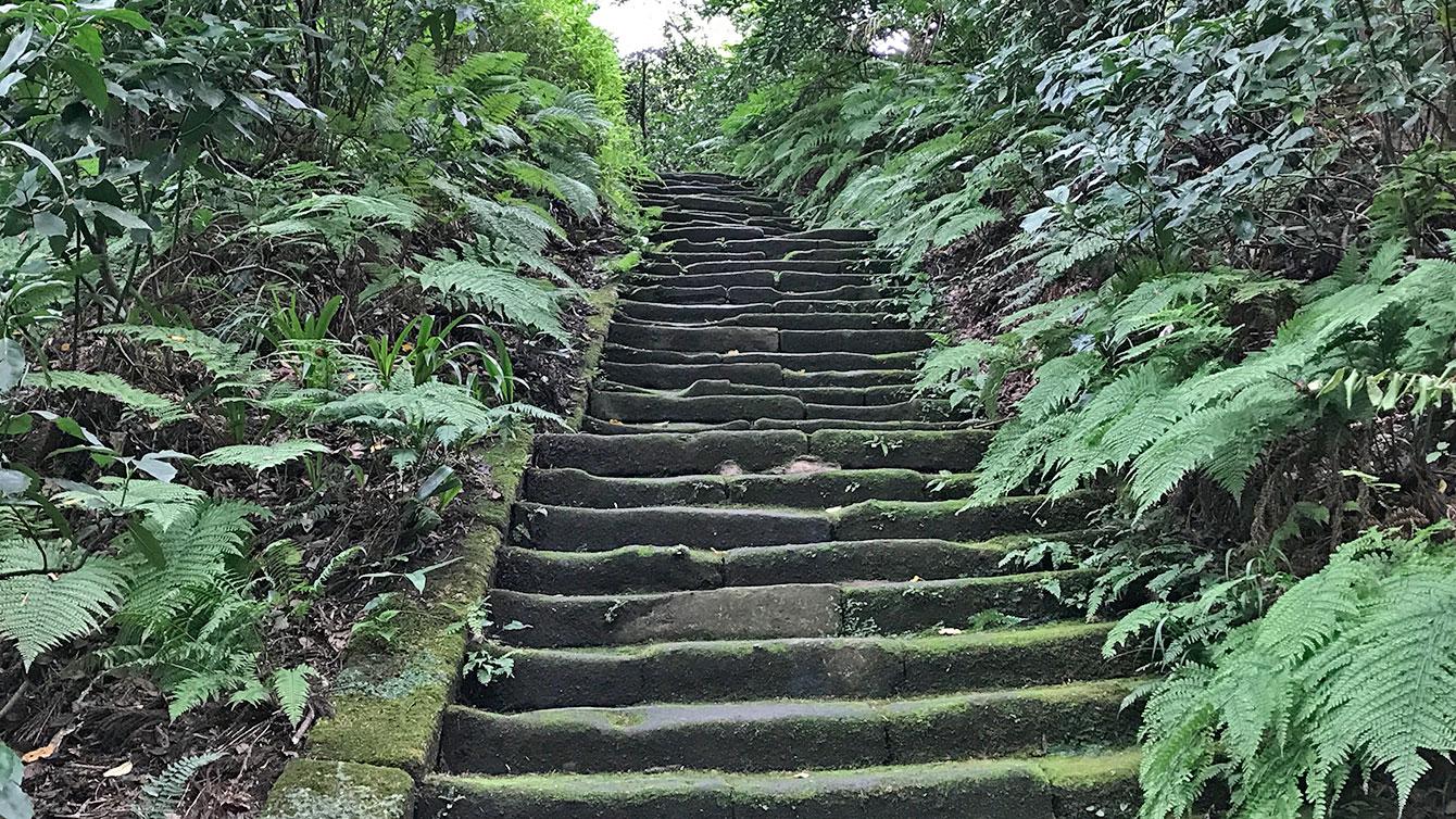 瑞泉寺の苔階段