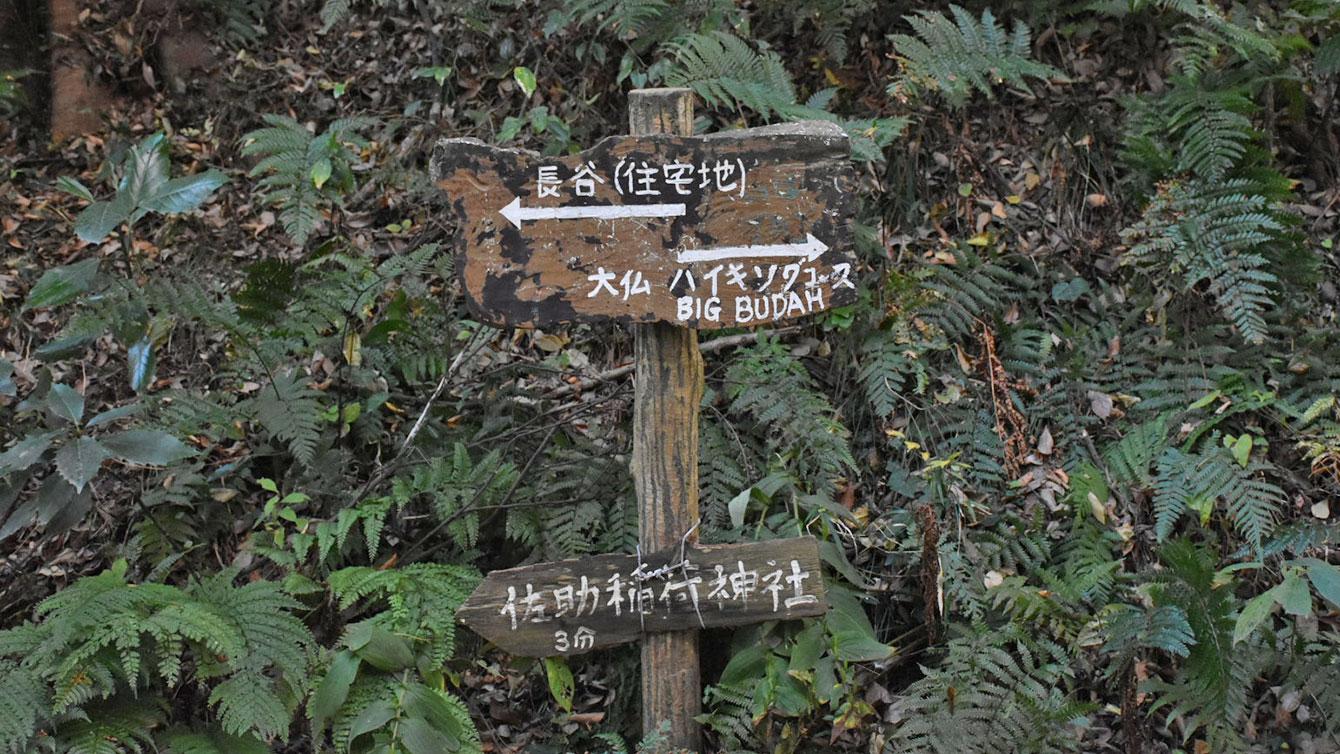 大仏ハイキングコースと佐助稲荷の分岐