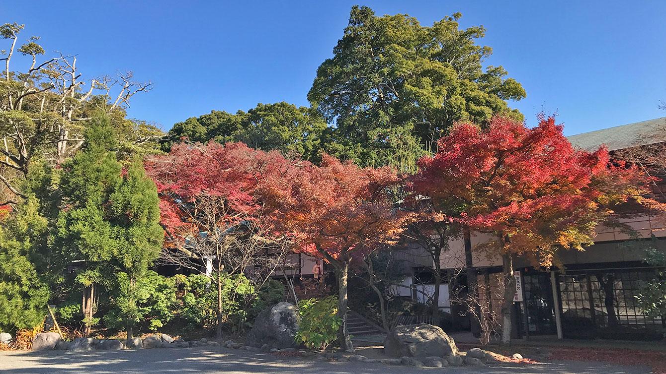 鎌倉宮の境内